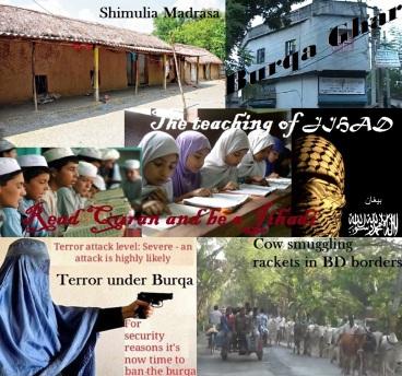 Madrasa-Burqa-Cow smuggling