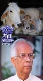 Save Cow