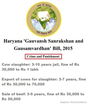 Cow Crime n Punishment in Haryana