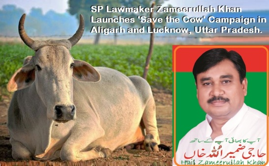 SP Lawmaker Zameerullah Khan Launches 'Save the Cow' Campaign in Aligarh and Lucknow, Uttar Pradesh.