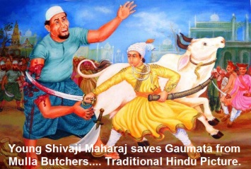 shivai-maharaj-saves-gaumata-from-mulla-buthchers