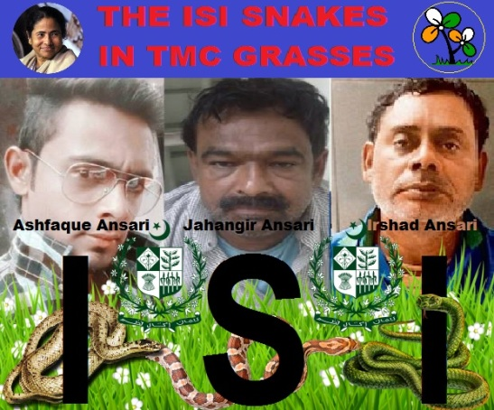 The ISI snakes in TMC Grasses