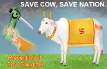 Save Cow Save Nation.