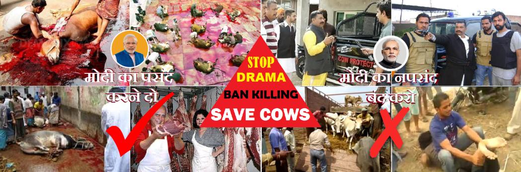 Stop Drama - Ban killing