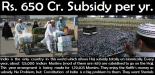 haj-subsidy